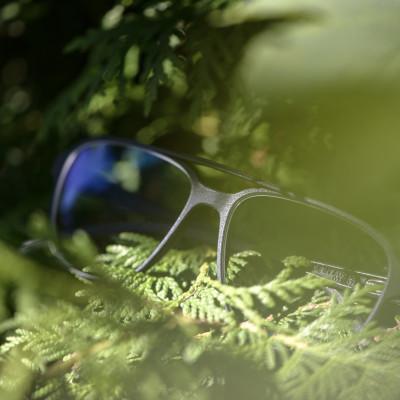 Brille aus 100 % Bio-Material scheint aus einem Baum herauszuwachsen.
