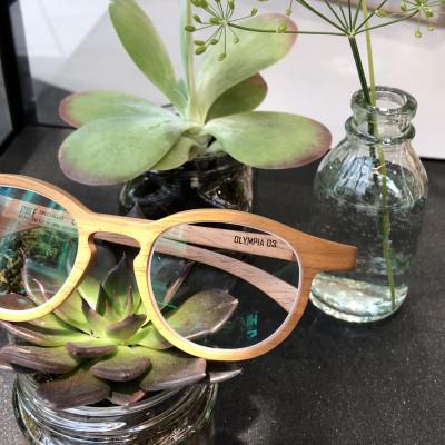 Holzbrille von ROLF Spectacles in einem Arrangement von kleinen Pflanzen als Schaufensterdekoration.